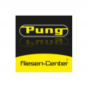Peter Pung GmbH & Co. KG