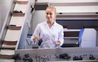 Weintechnologe/-technologin
